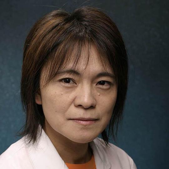 Amy Arai, PhD